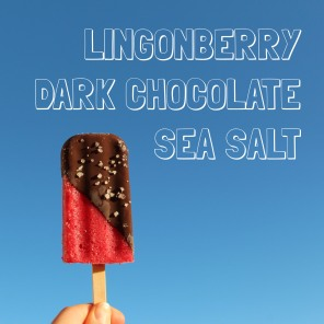 Lingonberry Dark Chocolate Sea Salt Lyx Pop