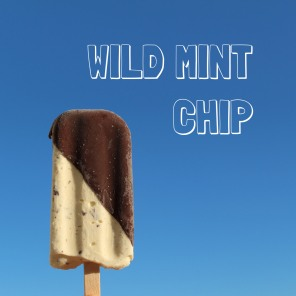Wild Mint Chip Lyx Pop
